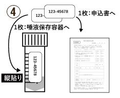PCR検査 唾液採取用検査キット ステップ④