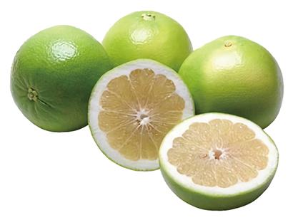 グレープフルーツ種子エキスのイメージ